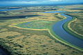 Meandering River 1 Innoko NWR.jpg