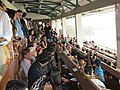 Members Enclosure boxes on Indian Derby day..JPG