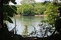 Mezcalapa River - panoramio.jpg