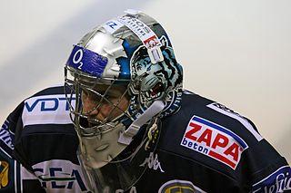 Michal Fikrt Czech professional ice hockey player