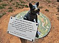 Mick the Cattle Dog monument in Wandoan October 2014.jpg