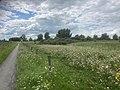 Middelgat Kwelderweg Krabburen Nationaal ParkLauwersmeer 14 31 08 215000.jpeg