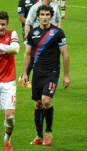 Mile Jedinak - Jedinak playing for Crystal Palace in 2014.