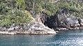 Milford Sound, South Island (483082) (9482482485).jpg