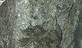 Mineraly.sk - enargit.jpg