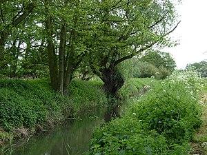 Minsmere River - The river at Middleton