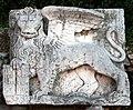 Mletacki lav 1207.JPG