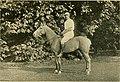 Modern polo (1902) (14782402005).jpg