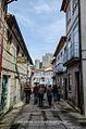 Montalegre, Terras de Barroso (16121740113).jpg