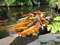 Monte Palace Tropical Garden, Funchal - 2012-10-26 (31).jpg