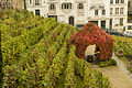 Montmartre vineyard 2012-10-09 n2.jpg
