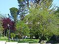 Morlupo Paese Aprile 20070142.JPG