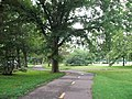 Mount Vernon Trail near Belle View.jpg