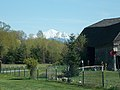 Mt Baker and local farm - panoramio (1).jpg
