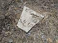 Mt Zion M B Church Cemetery Clarkedale AR 2013-06-29 013.jpg
