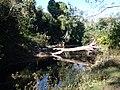 Mu Si, Pak Chong District, Nakhon Ratchasima 30130, Thailand - panoramio (15).jpg