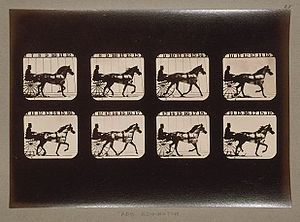 The Fairman Rogers Four-in-Hand - Abe Edgington Series (1878) by Eadweard Muybridge.