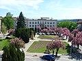Námestie SNP - keď kvitnú sakury - panoramio.jpg