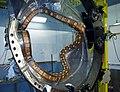 NCSX modular coil in process.jpg