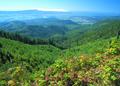 NRCSOR00084 - Oregon (5847)(NRCS Photo Gallery).tif