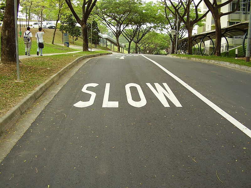"""""""SLOW"""" painted on a road surrounded by trees"""