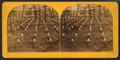 National cemetery, Arlington, Va, by Bell & Bro. (Washington, D.C.) 8.png
