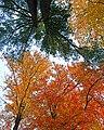 Nature's Palette (6290479072).jpg