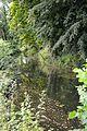 Naturschutzgebiet Mittleres Innerstetal mit Kanstein - Derneburg - die Nette unterhalb des Schlosses (1).JPG
