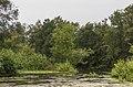 Natuurgebied De Kraanlânnen van It Fryske Gea. 18-07-2019. (actm.). 08.jpg
