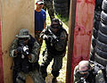 Naval Special Warfare Troops Train With Elite Brazilian Unit During Joint Training DVIDS280913.jpg