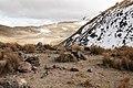 Nevado (111796185).jpeg