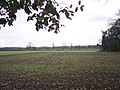 Newly Planted Fields, Phepson - geograph.org.uk - 84148.jpg