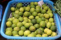 Nigerian Lime.jpg