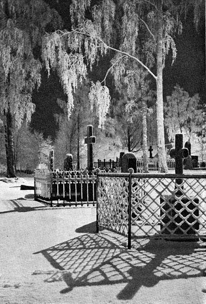 File:Night in the Cemetery.jpg