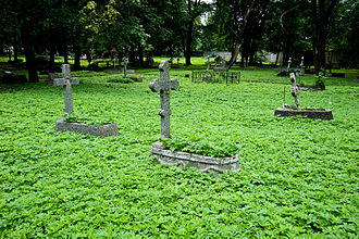 Novodevichy Cemetery (Saint Petersburg) - Old tombstones