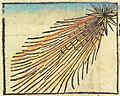 Nuremberg chronicles f 254r 1 comet.jpg