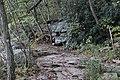 Ohiopyle State Park River Trail - panoramio (4).jpg