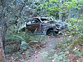 Old auto ruins in Portola Redwoods State Park, somewhere on the Bear Creek trail (an old jeep trail) - panoramio.jpg
