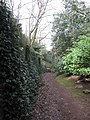 Old path above Helsby - geograph.org.uk - 1238272.jpg