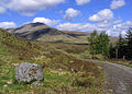 On the West Highland Way - geograph.org.uk - 1450877.jpg