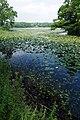 Onuma Park Nanae Hokkaido Japan08bs5.jpg