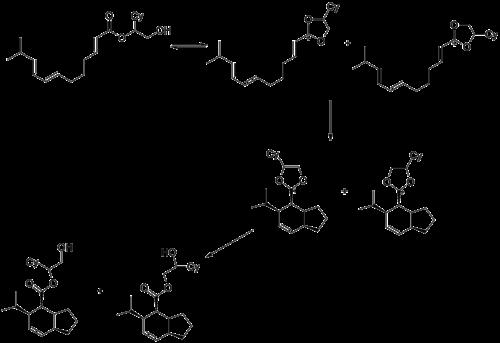 Oxocarbenium Wikipedia