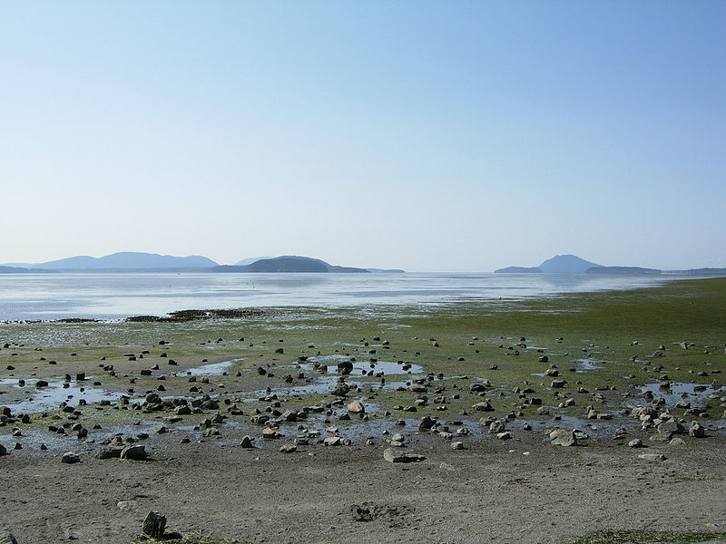 File:Padilla Bay seen from Bayview State Park.jpg