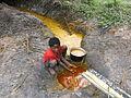 Palm oil manufacture (9) Lac Mukamba, Teretoire de Dimbelenge, Kasai occ. RD Congo.JPG