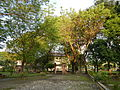 Pangasinanjf7978 08.JPG