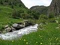 Parcours botanique Le Gua, Alpe d'Huez abc8.jpg