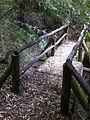 Parque ingles, Puente en sendero (11675597875).jpg