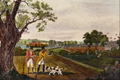 Partridge Shooting near Windsor - Robert Havell.png