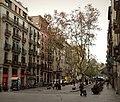 Passeig del Born. La Ribera.jpg