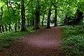 Path in Ward River Valley Park near Knocksedan.jpg